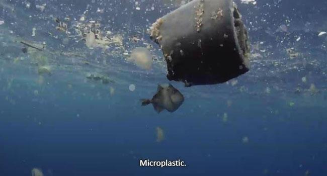 Microplastica in mare