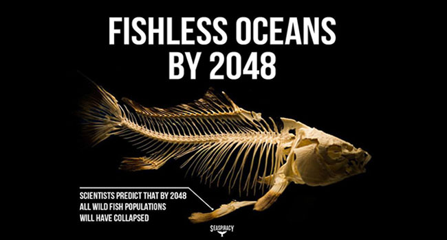 oceani vuoti entro il 2048