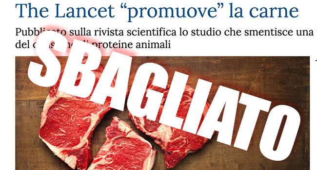 The lancet carne