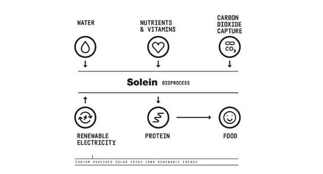Solein polvere proteica