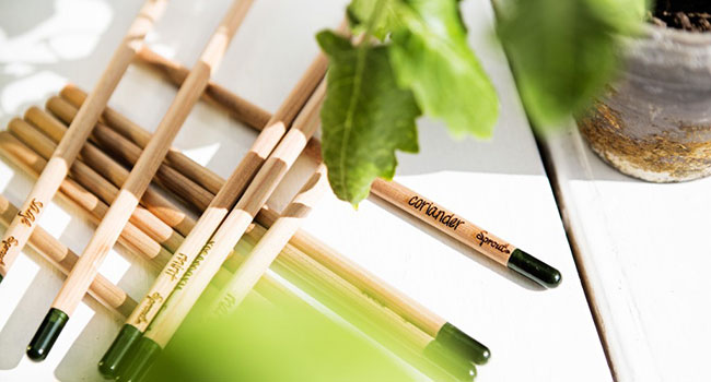 matite da piantare