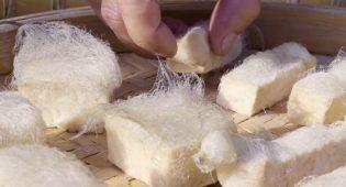 hairy-tofu-che cosa è