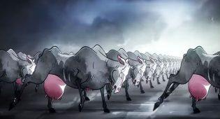"""L'illustratore dei Pink Floyd per lo spot del cioccolato vegano: """"Le mucche non sono macchine""""- VIDEO"""
