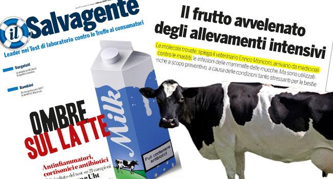 antibiotici-nel-latte salvagente