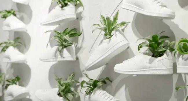 Adidas venderà scarpe in pelle vegetale ricavata dai funghi