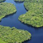 La foresta amazzonica in Brasile
