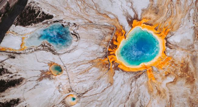 """Dai funghi """"vulcanici"""", una proteina a base vegetale quasi a impatto zero"""