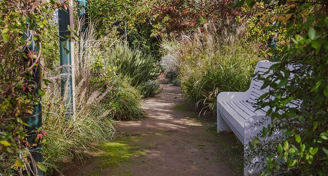 I giardini terapeutici studiati per la malattia di Alzheimer