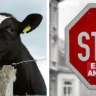 Causa legale uk contro allevamenti